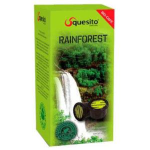 Rainforest (Райнфорест)